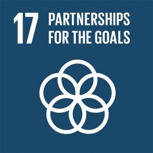 Partners for the goals logo